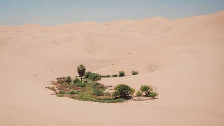 Little oasis near Huacachina oasis in Peru, desert in Ica city Фото со стока - 131992247