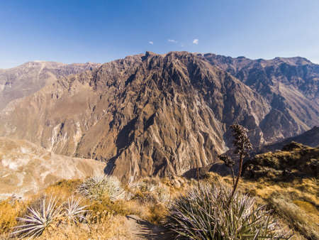 Colca Canyon from Cabanaconde in Peru. The deeppest canyon on earth. Фото со стока - 131750462