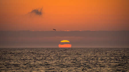 The sun hiding with clouds in the ocean with bird flying on the coast of Paracas in Peru Фото со стока - 131750525