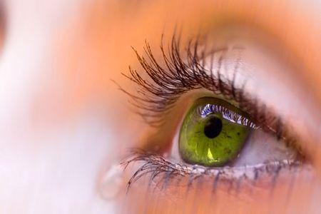 groene visie