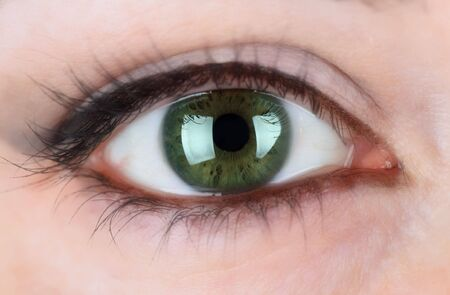 a green eye of a beautiful woman Stock Photo