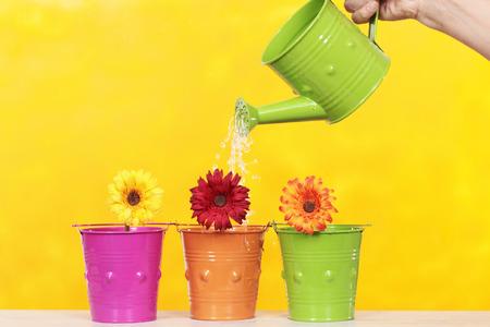 brilliant colors: regando unas flores con colores brillantes Foto de archivo