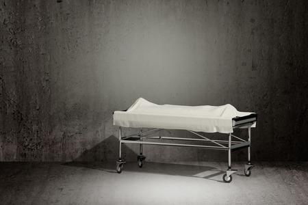 cadaver: 3d rendering of a cadaver covered