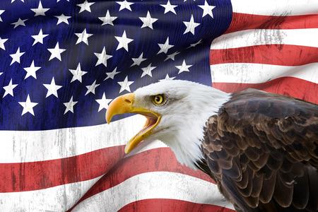een mooie kale adelaar met een achtergrond van een vlag van de VS Stockfoto