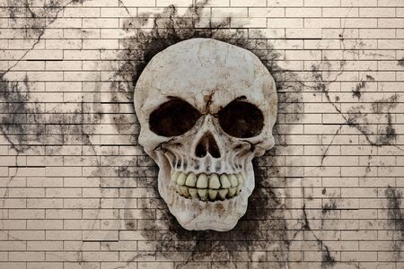cranial: 3d rendering human skull on a stone background Stock Photo