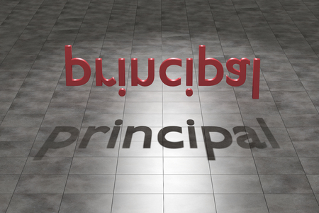 3D-weergave van een abstracte compositie met een schaduw van het woord principal