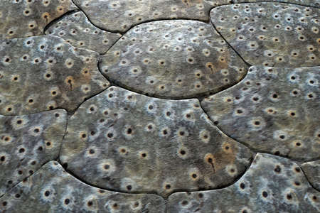 crocodile skin: 3d rendering of a texture of crocodile skin Stock Photo