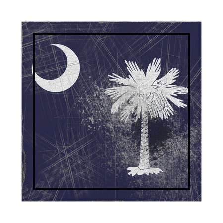 3d rendering of a South Carolina State flag on a rusty surface