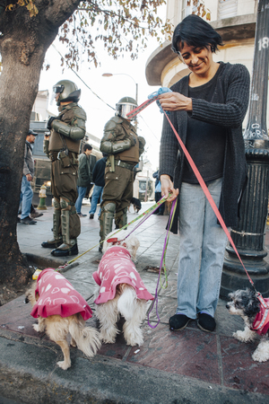 Valparaiso, Chile - June 01, 2017: A women with her dogs watching a protest in Valparaiso, following President Michelle Bachelets annual state-of-the-union speech to Congress.