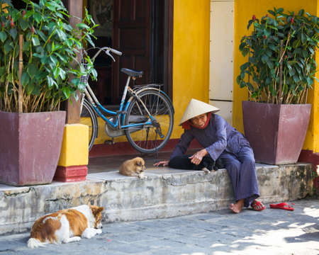 conical hat: HOI AN, VIETNAM - MARCH 17: Senior woman in conical hat is playing with puppy on the street of Hoi An ancient town, UNESCO World Heritage Site on March 17, 2014 in Hoi An, Vietnam. Editorial