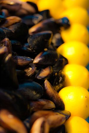 Ready to eat mussels stuffed with spicy cooked rice and lemon. Street food concept. Mediterranean region. Traditional in Turkey. Selective focuse.