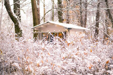 The snow-covered bushes in winter park and little house with fairy lights. Christmas mood. 스톡 콘텐츠