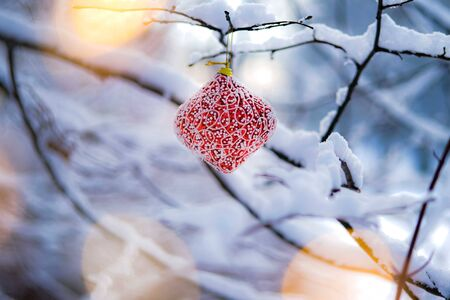 Red Christmas Decoration Hanging Outside On A Frosty Tree Branch with bokeh fairy lights.