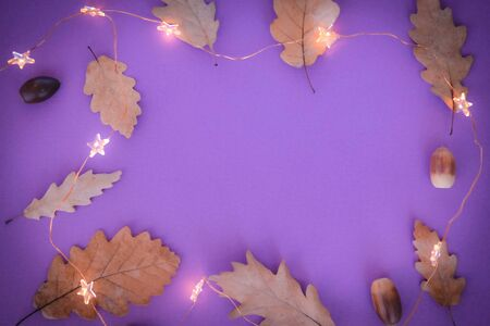 Dry oak autumn leaves over lilac pink lavender background. Autumn composition, Flat lay, top view, copy space.