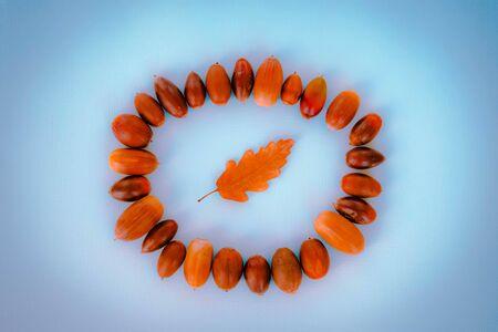 Dry oak autumn leaf and acorns over blue background. Autumn composition, Flat lay, top view, copy space. Banco de Imagens