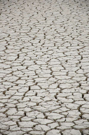 cracked and dry earth in the desert