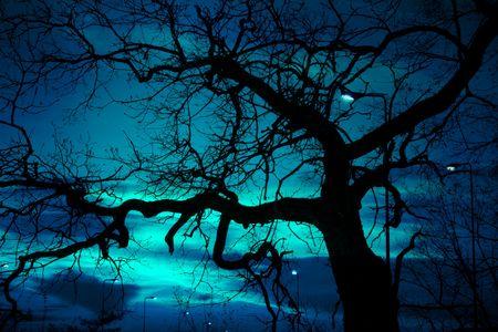 inquietante el paisaje, el árbol desnudo y la lámpara de la calle en halloween noche, con la extraña luz sobre el cielo oscuro