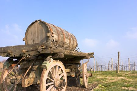 wine trade: old cart barrel for transport of wine in farm with row grapevine