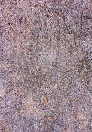 decadent: wall with peeling paint, old chipped plaster, dirty grunge decadent texture