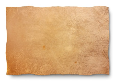 white leather texture: goat skin parchment - blank sheet for map and old banner - empty leather texture for sign, edict, manuscript