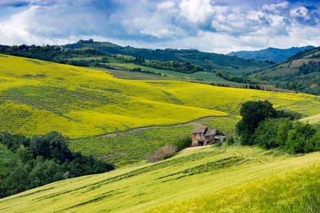 paisaje rural: colinas, paisaje italiano - montaña de Italia, valle verde amarillo