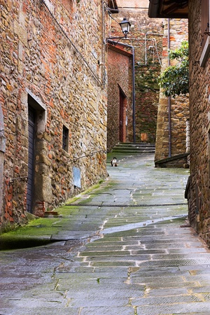 antique narrow alley in tuscan village with pavement of porphyry cobblestones - tuscany, italy photo