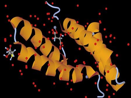 la qu�mica org�nica: el modelo de la mol�cula de proteina - Ilustraci�n de una part�cula biol�gica Foto de archivo - 12021756