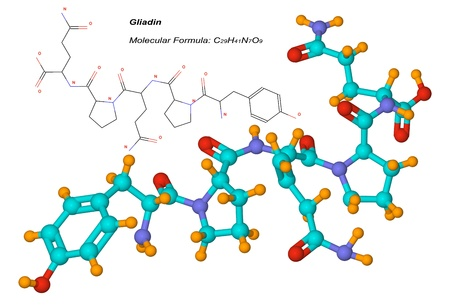 gliadin molecule, component of gluten, is a protein present in wheat and other cereals. It is the toxic factor associated with celiac disease
