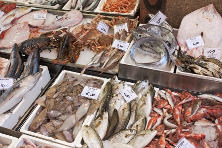 fish store: crates of fish and crustaceans on a fish market stall - stand with many types of fish Stock Photo