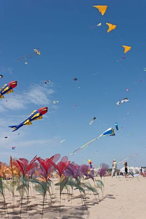 flowers of nylon fabric and colored kites flying on the beach at international kite festival, on April 30, 2012 in Cervia (RA) Italy Stock Photo - 13512232