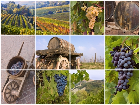 collaage of grapes, vineyard, old barrels and tools for italian wine production photo