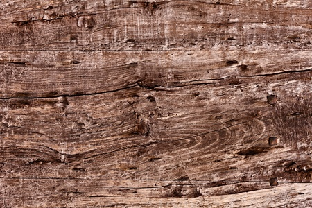 knotty: old plank of knotty wood with woodworm holes -  background texture of cracked wooden board Stock Photo