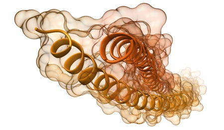 helical: ribbon model of molecule  chemical structure of human keratin filaments, protein component of skin, hair and other tissues