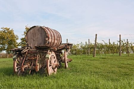 old cart barrel for transport of wine in italian farm with grapevine rows photo