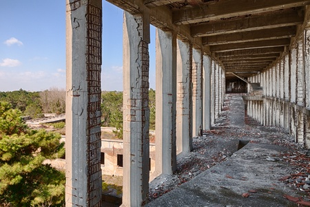 forsaken: abandoned building, interior with ramp and columns  - reinforced concrete of construction in ruins with a view of the pine forest