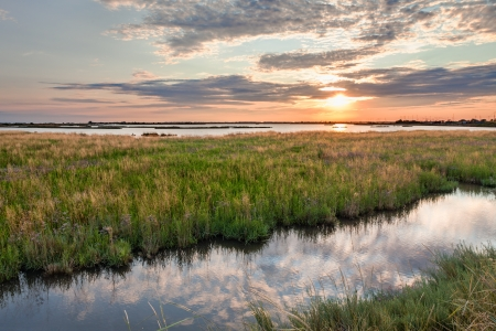 landscape at sunset of the swamp - the lagoon in the natural reserve of Comacchio, Ferrara, Italy  Reklamní fotografie