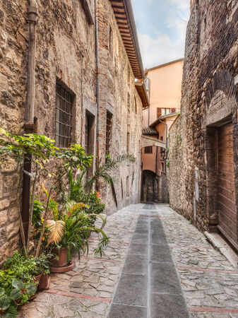narrow: picturesque narrow alley with ancient arch, underpass and pot plants in Todi, Umbria, Italy