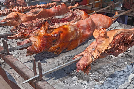 embers: spit roasted a whole pigs cooked over hot coals - gastronomic traditions of Sardinia, Italy, roasting pig (porceddu) on the rack over the embers