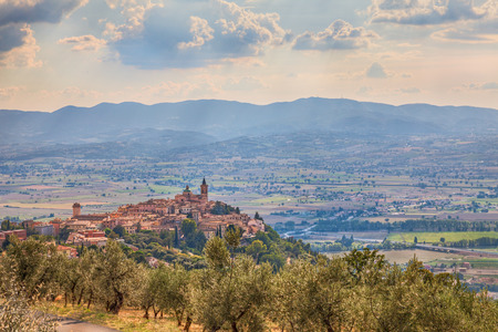 little town: landscape of the ancient town on the hill Trevi, Umbria, Italy, with olive tree in foreground Stock Photo