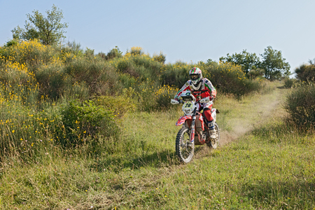 scrambler: biker riding enduro motorcycle Beta RR 400 in the green hills with yellow gorse during the Italian championship Motorally Terre di Romagna, on July 5, 2015 in Predappio, FC, Italy