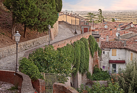 caper: picturesque cityscape of the old town with an ancient alley and caper bushes on a wall in the medieval town Bertinoro, Emilia Romagna, Italy Stock Photo
