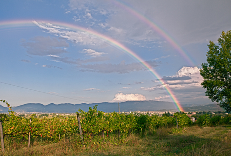 rainbows: landscape of the country with vineyard in autumn after rain with double rainbow, in Umria, Italy Stock Photo