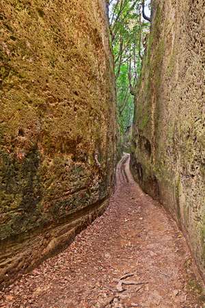 trenches: Pitigliano, Grosseto, Tuscany, Italy: The Vie Cave are excavated roads linking an Etruscan necropolis and several settlements in the area between Sovana, Sorano and Pitigliano, consisting of trenches excavated as vertical cliffs in tuff bedrock