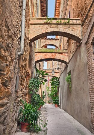 alley: Bevagna, Umbria, Italy: picturesque narrow alley with ancient arches and plants in the old town