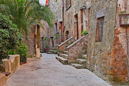 alley: Pitigliano, Grosseto, Tuscany, Italy: picturesque old alley with ancient houses and plants in the medieval town