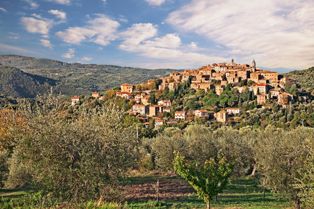 italy landscape: Seggiano, Grosseto, Tuscany, Italy: landscape at sunrise of the ancient hill town on the slopes of Mount Amiata with olive grove in foreground