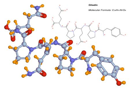 グリアジン分子の 3 d イラストレーション。グルテンの小麦と他の穀物に存在するタンパク質です。それはセリアック病に関連付けられている有毒な