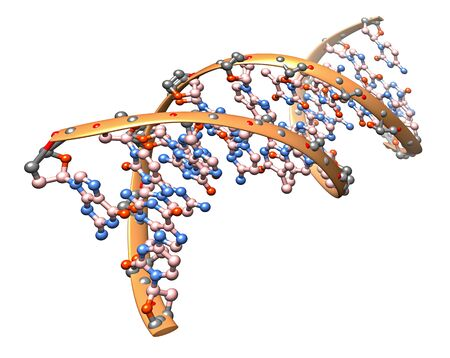 3D illustration of the DNA molecule - organic chemistry: model of the biological particle