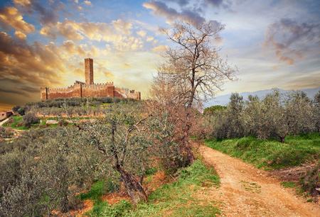 カスティリオーン ・ フィオレンティーノ、アレッツォ、トスカーナ、イタリア語: 中世城のモンテッキオ Vesponi オリーブの木の果樹園が国で 写真素材