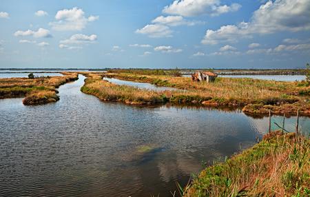 landschap van het Po-delta-park in Rosolina, Rovigo, Veneto, Italië. Schilderachtig uitzicht op het moeras in het natuurreservaat Stockfoto